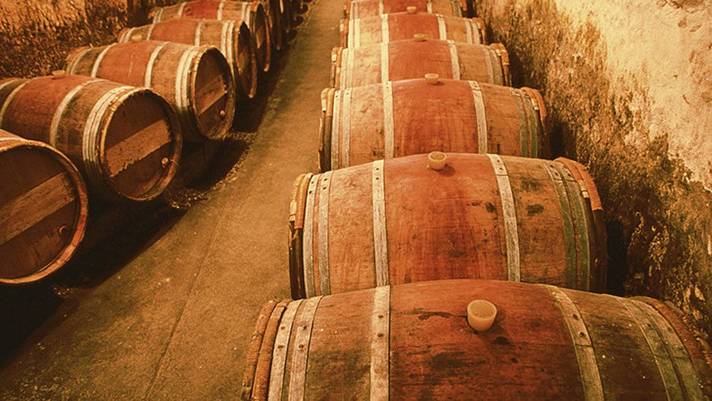 row of wooden casks in wine cellar in Perth
