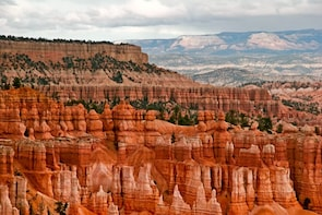 1 Day Amazing Tour : Zion Canyon and Bryce Canyon Tour