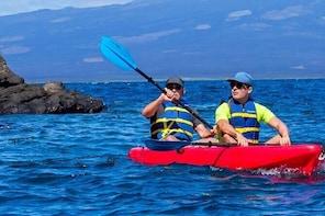 Kayak Tour from Isabela Island
