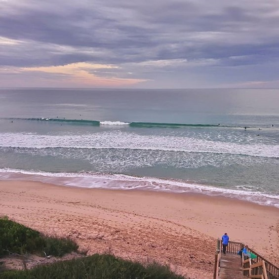 Show item 5 of 5. Full-Day Great Ocean Road Surfing Tour