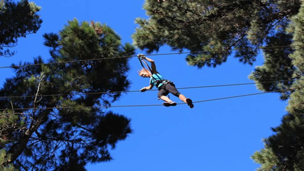 Show item 5 of 5. woman walking high wire at zip line course in Canterbury