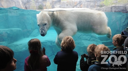 Go Chicago Explorer Pass: Choose 3, 4 or 5 Top Attractions
