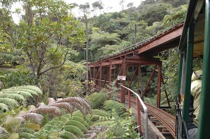 Driving Creek Railway 632KB.jpg