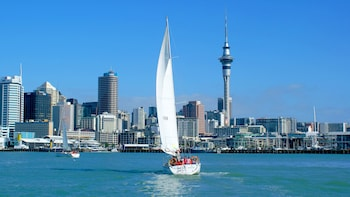 Auckland Harbour Sailing Cruise