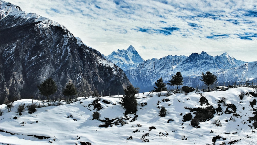 Show item 1 of 5. Auli and Rishikesh Tour from Delhi