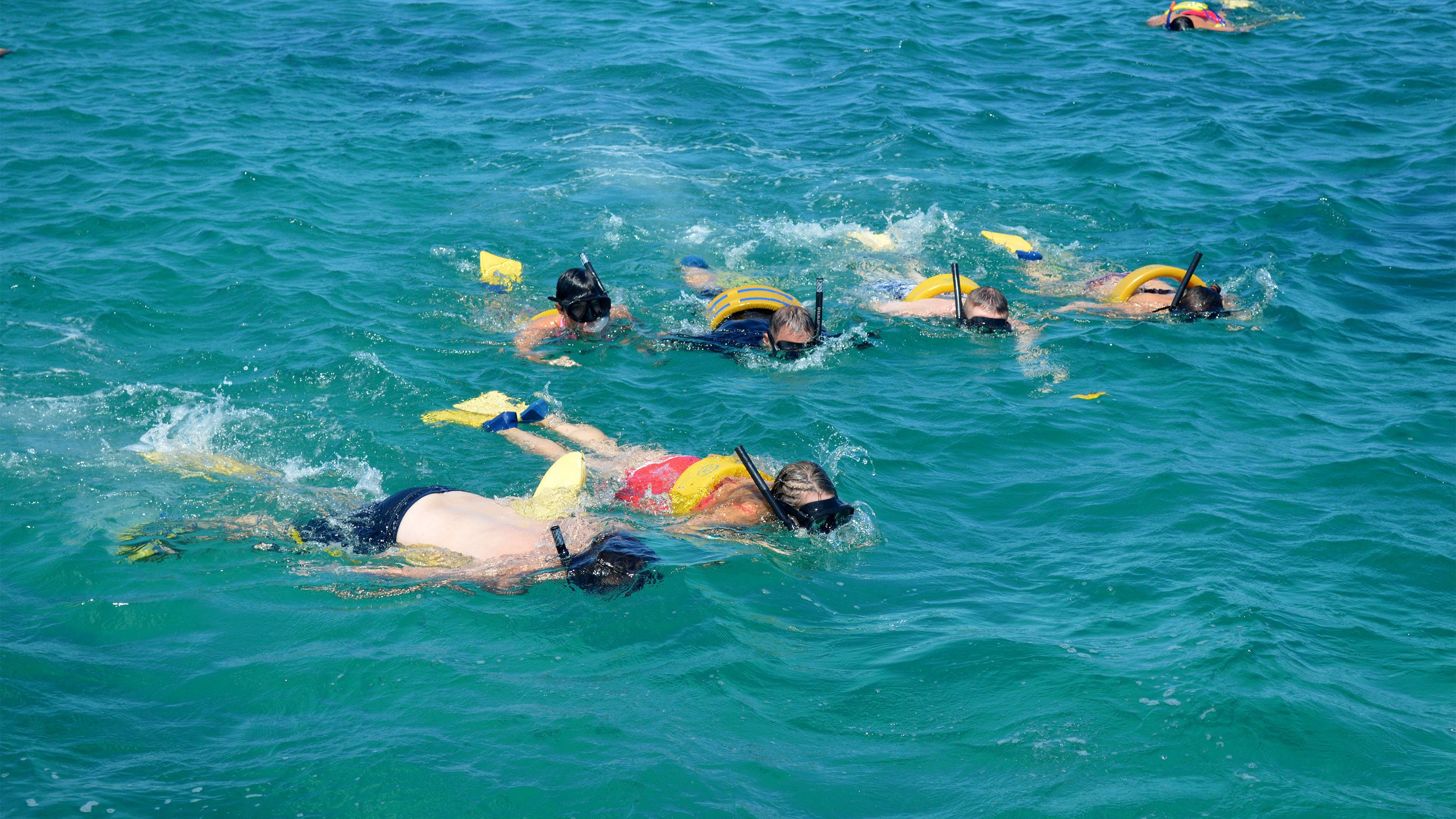 A group of snorkelers in the water near Nevis