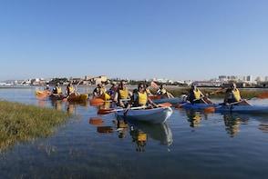 Kayak Tour in the Algarve's Ria Formosa from Faro