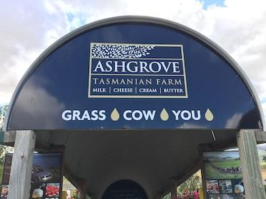 Ashgrove Cheese Factory.JPG