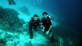 Discovering Diving in Alcudia