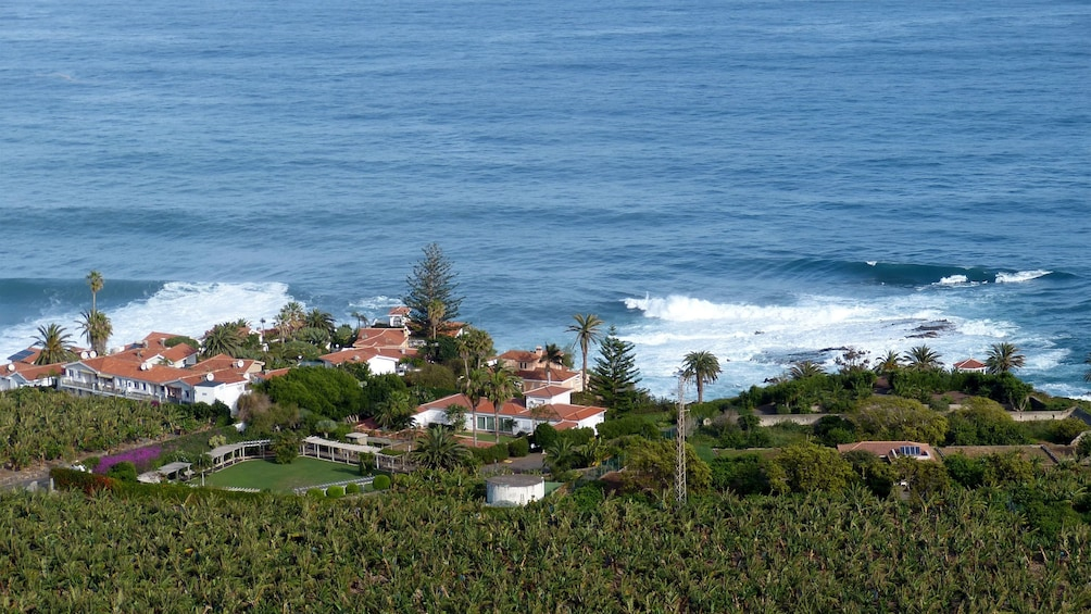 Homes near the water in Tenerife