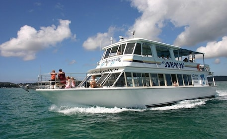 Surprise Dolphin Cruise - Port Stephens NSW.jpg