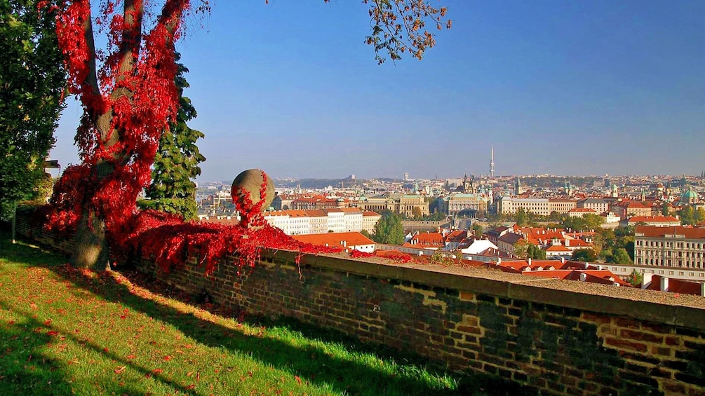 Show item 10 of 10. Colorful foliage in a scenic hill-top park overlooking the city of Prague