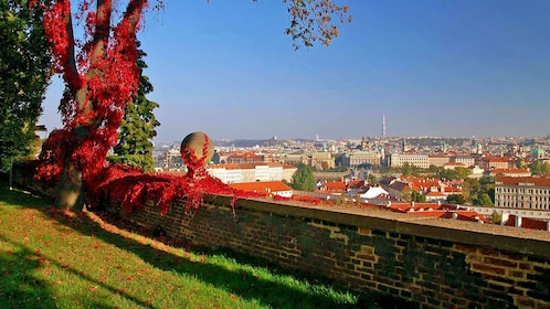 Colorful foliage in a scenic hill-top park overlooking the city of Prague