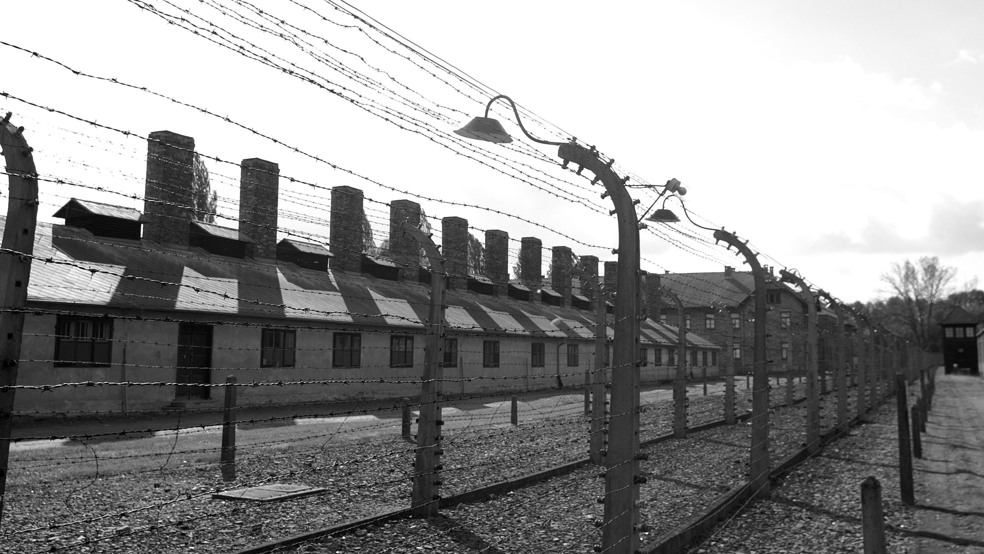 The barbed wire fences around Auschwitz