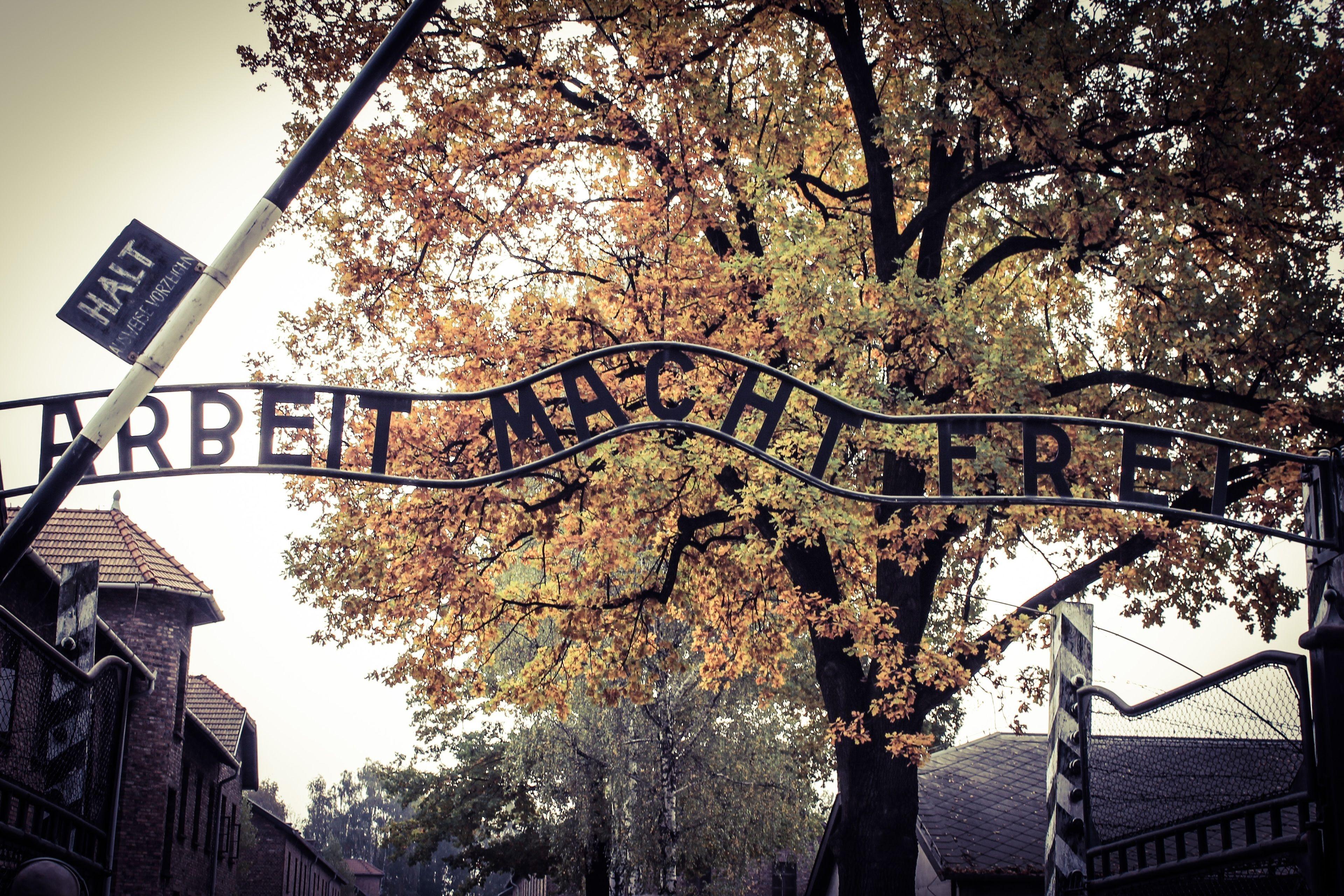 Auschiwtz Birkenau 1 .jpg