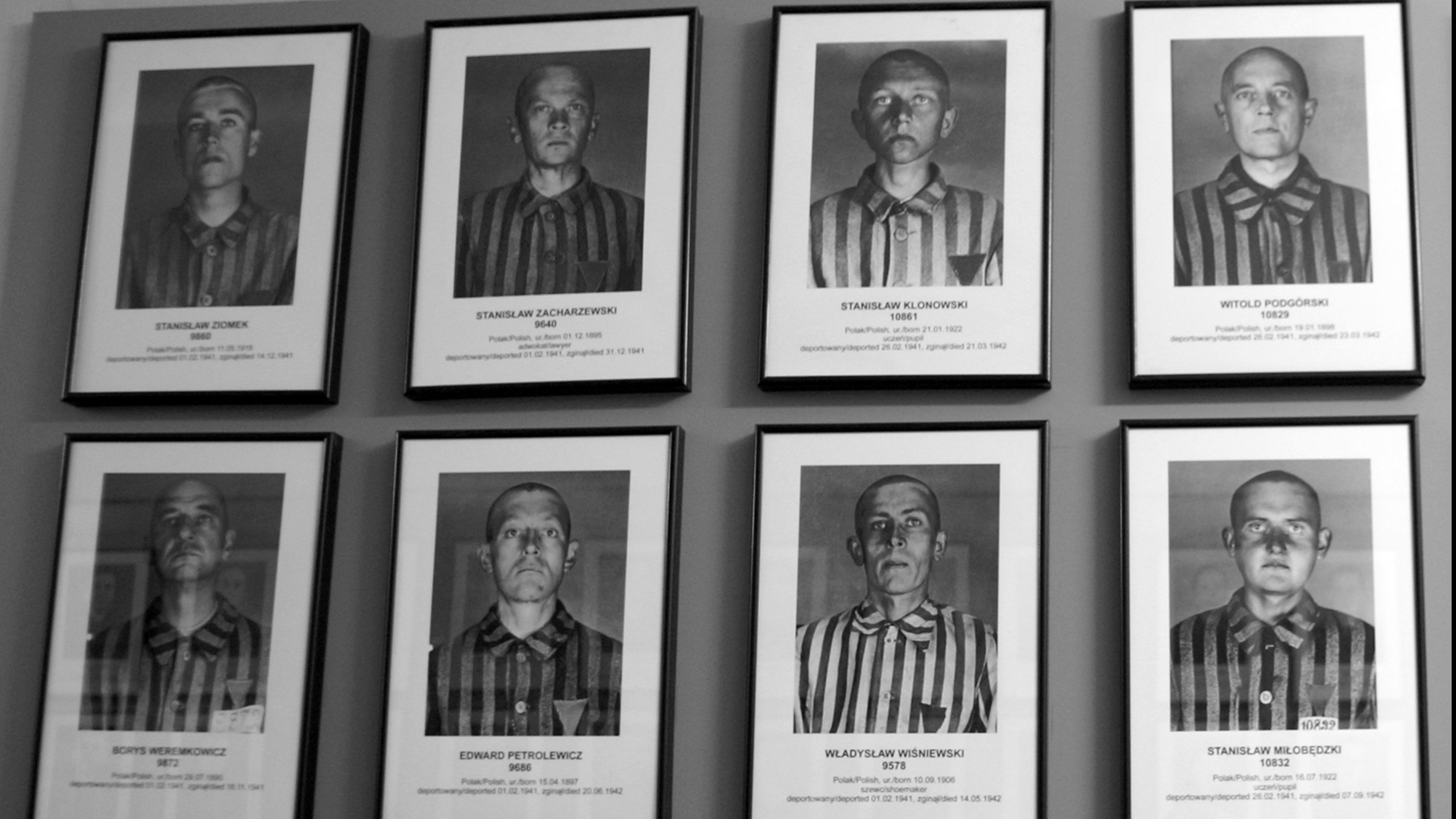 photos on a wall of numerous prisoners from Auschwitz