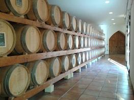 Tavel & Châteauneuf-du-Pape Wine Tour