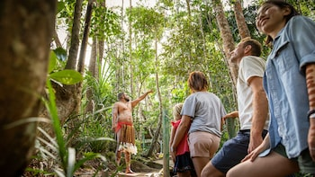 Kuranda Rainforestation Nature Park Tickets