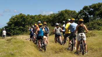 Island Discovery Bicycle Tour