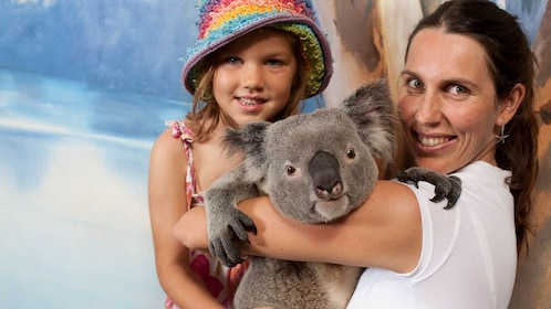 woman holds adult Koala bear in her arms at animal sanctuary in Cairns