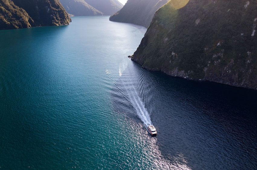 Show item 4 of 9. Milford Sound Nature Cruise