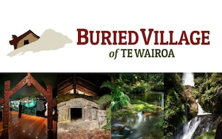 Admission to Buried Village