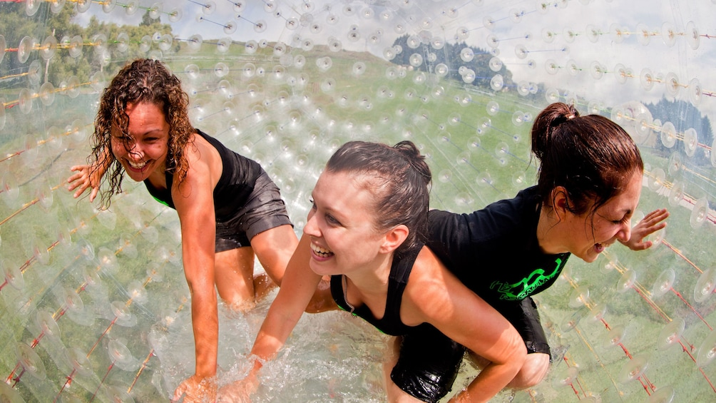 Show item 2 of 4. Zorbing girls in plastic orb in Rotorua, New Zealand.