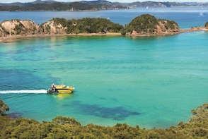 Discover The Bay of Islands Cruise