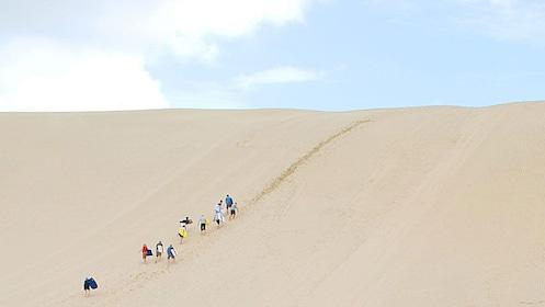 Dune riders climbing up dune in Paihia, New Zealand.