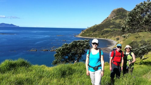 three people stroll narrow pathway along coastline of Coromandel