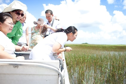 Everglades Adventure Tour From Miami in a Luxury Bus