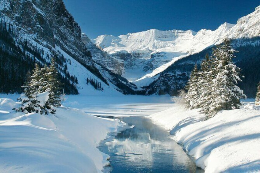 Show item 3 of 4. Photo Walk About at Lake Louise