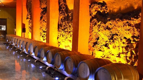 casks of wine at a wine cellar in Tenerife
