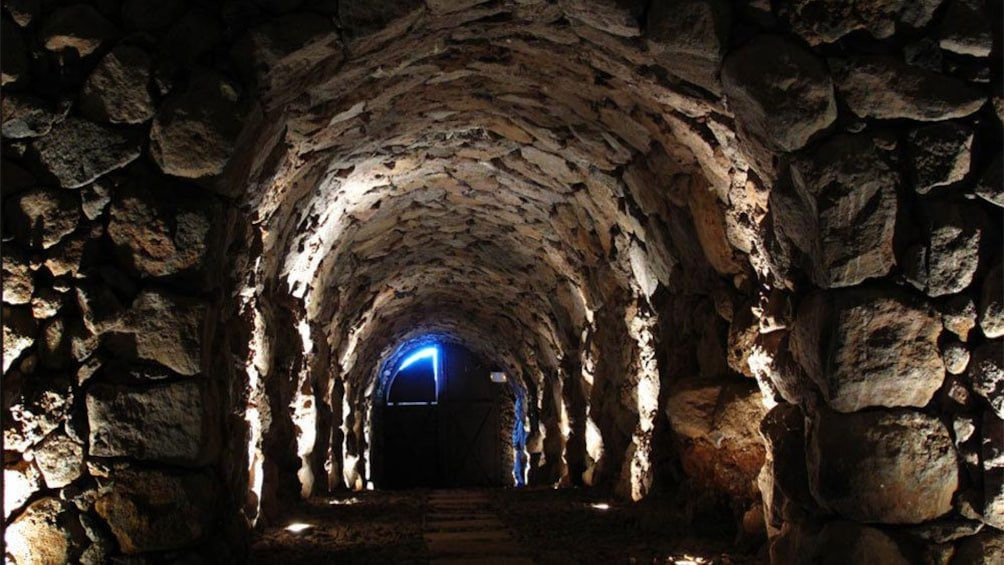 Foto 2 van 5. a wine cellar in Tenerife
