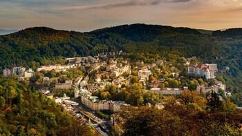 Private Tour to Spa Karlovy Vary