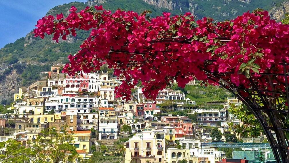 Apri foto 5 di 9. City of Naples