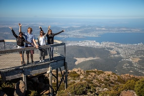 Mount Field, Mount Wellington & Wildlife Tour from Hobart