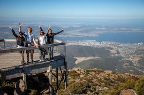 Mount Field, Mount Wellington & Wildlife Tour from Hobart