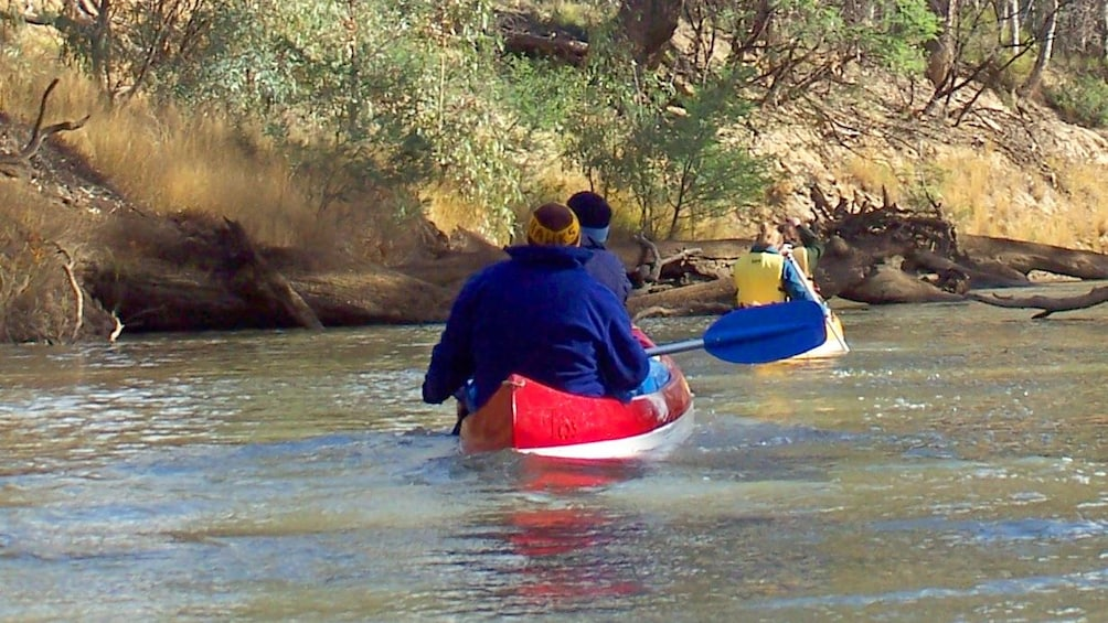 Show item 2 of 5. Group on Murray River Canoeing in Australia.