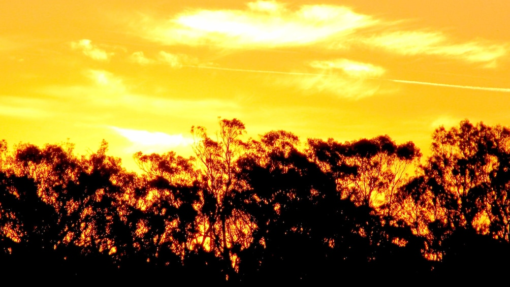 Show item 3 of 5. Sunset on the Murray River in Australia.