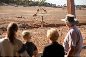Entrée à Monarto Safari Park
