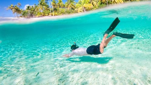 Man snorkeling in the Keppel Bay in Australia.