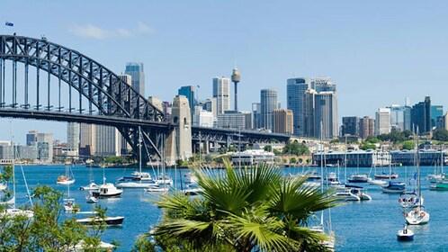 Landscape view of Sydney Harbour in Australia