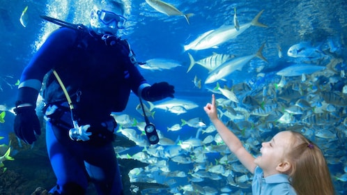 Young child pointing to tank cleaner in Aquarium in Australia.