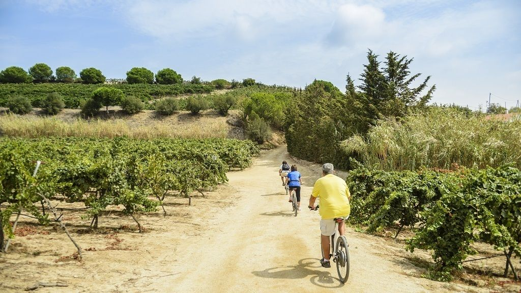 eBike tour from Barcelona's coastline to the Vineyards