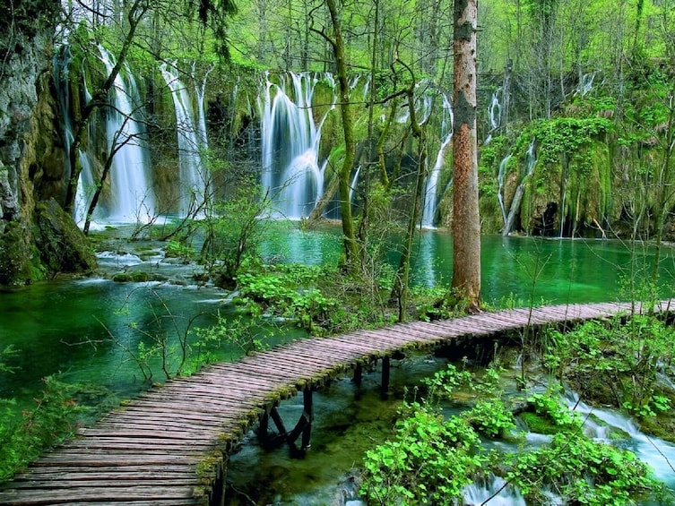Show item 2 of 8. Exclusive tour with overnight stay in Plitvice National Park