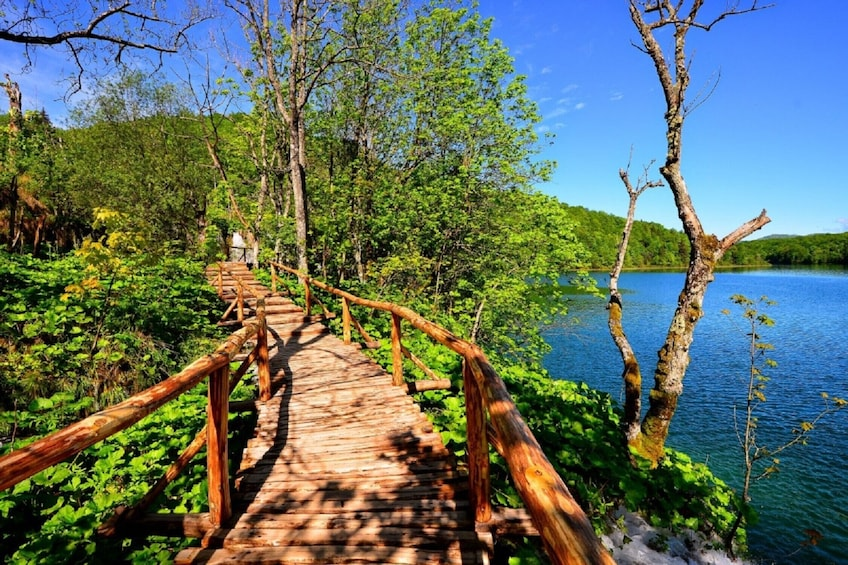 Show item 3 of 8. Exclusive tour with overnight stay in Plitvice National Park