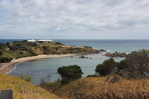 Shore Excursion: Coast, Caves and Wildlife Park - 8 hour tour