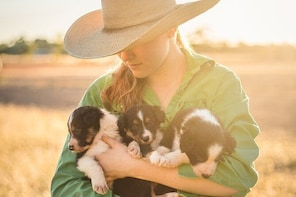 Skip the Line: Katherine Outback Experience