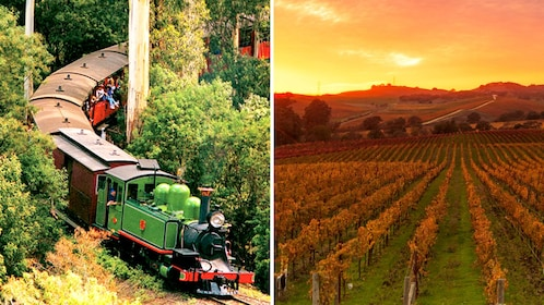 Combo image of Train and vineyards in Yarra Valley